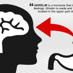 The Appetite Suppressant of Ghrelin Hunger Hormone