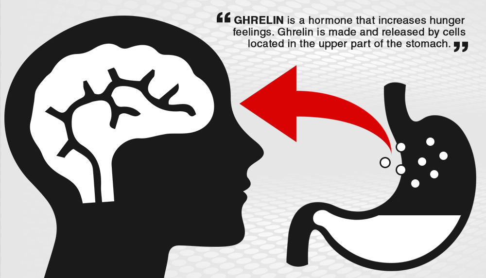 The Appetite Suppressant of Ghrelin Hunger Hormone ...